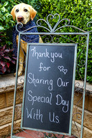 07DL1617 Darci & Angus wedding welcome sign 1800px